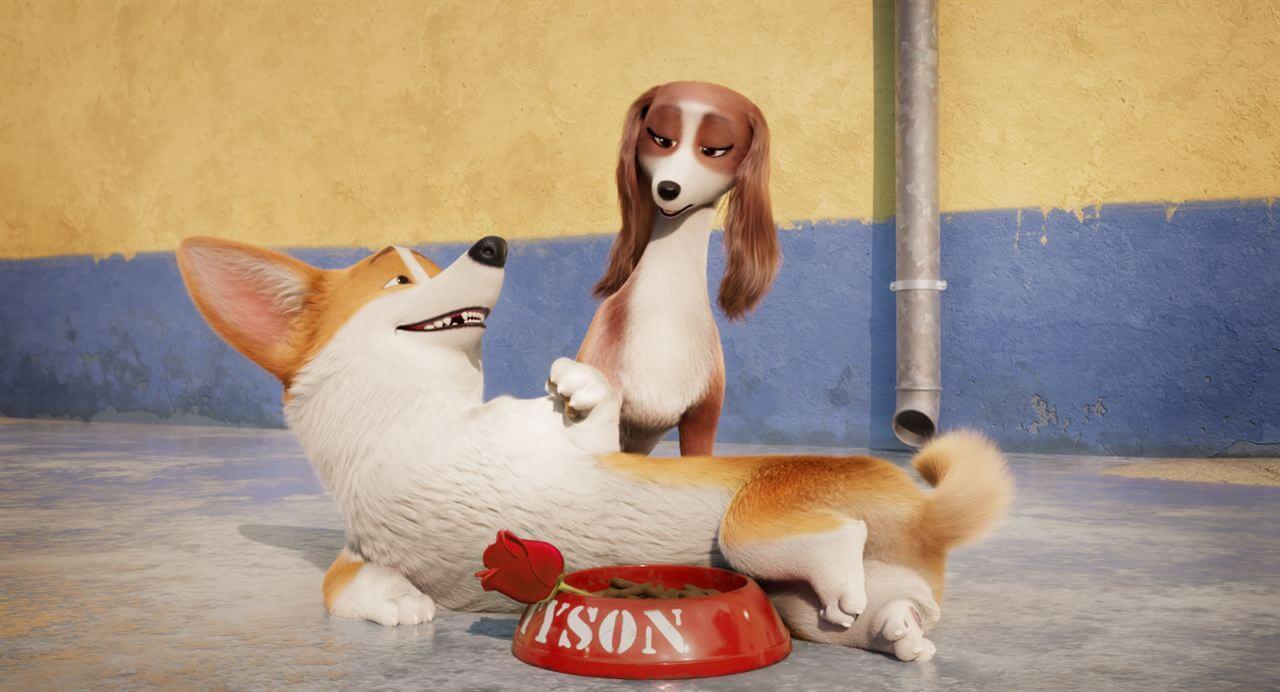 Crítica Corgi Top Dog, Corgi: Top Dog, Imagem Filmes, Delfos