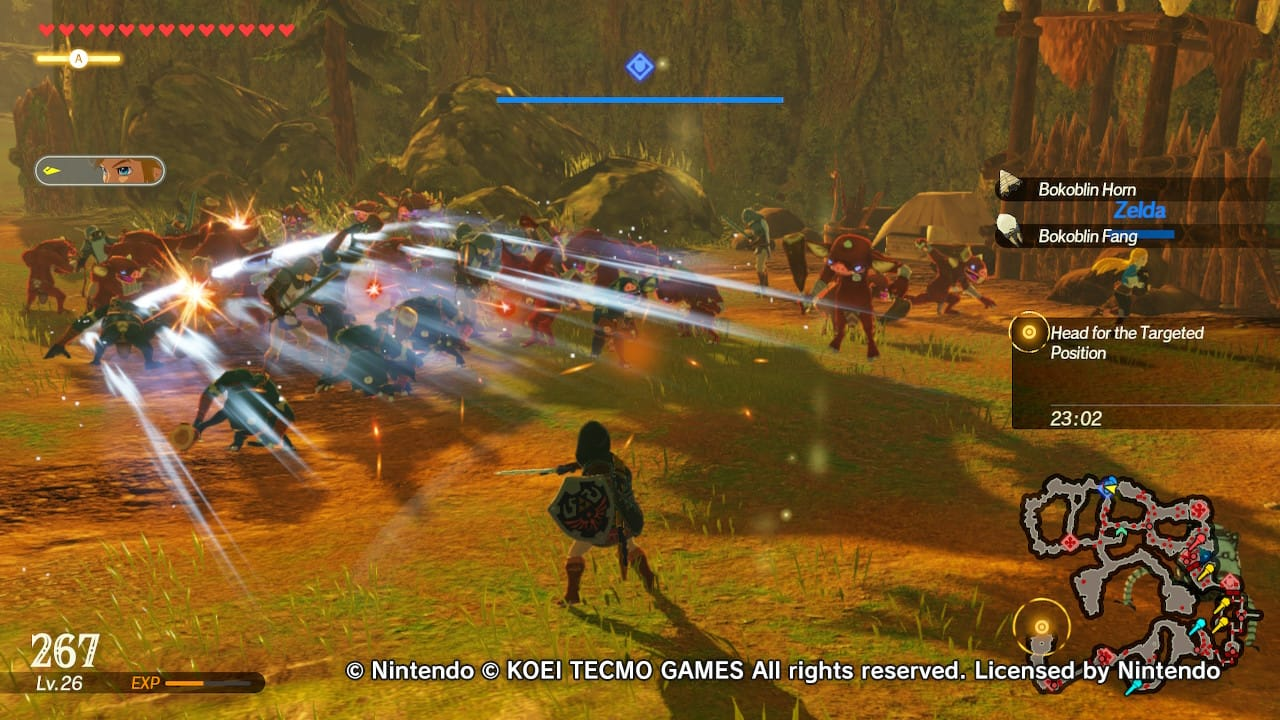 Hyrule Warriors: Age of Calamity, Hyrule Warriors, Delfos